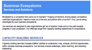 Strategy in Business Ecosystem Services Brief